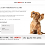 Pet Grooming Website Design